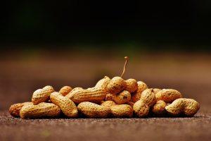 "<img src=""peanuts.jpg"" alt=""natural healthy snack zero waste"""