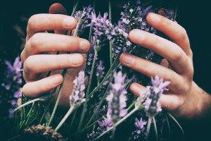 "<img src=""lavender.jpg"" alt=""natural aromatherapy lavender essential oil"""