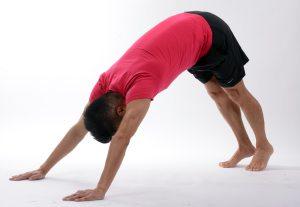 yoga pants, leggings