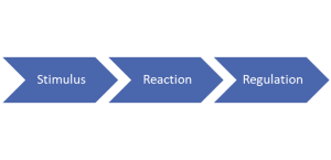 Stimulus, reaction, regulation